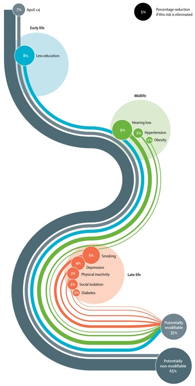 Loss Of Use Coverage >> Lancet Commission Claims a Third of Dementia Cases Are Preventable | ALZFORUM